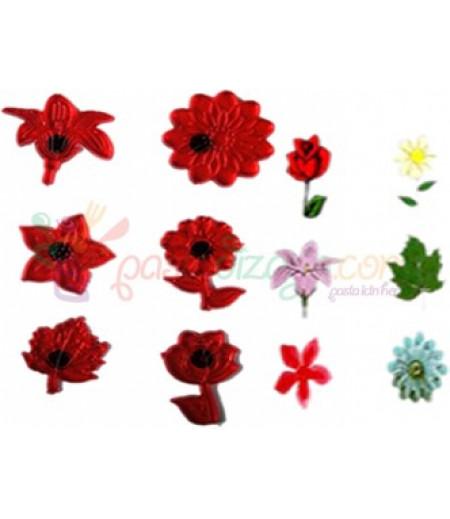 Çiçekler Temalı Şeker Hamuru Baskı Seti