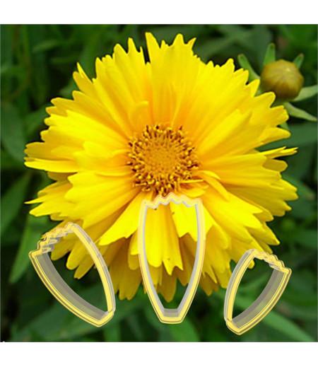 Calliopsis Çiçeği Yapma Seti, Polikarbon
