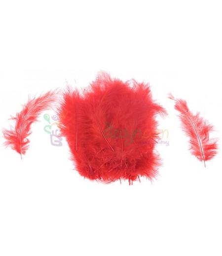 Kırmızı Renk Süsleme Tüyleri