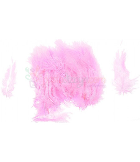 Pembe Renk Süsleme Tüyleri