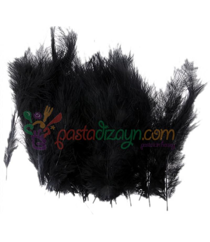 Siyah Renk Süsleme Tüyleri